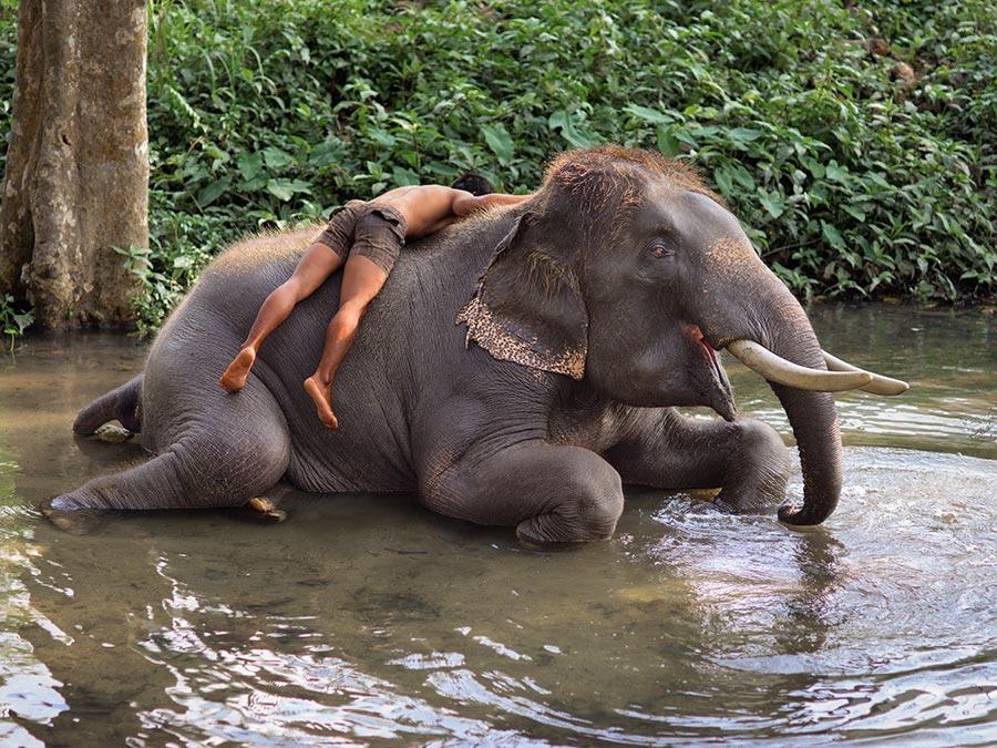 THAILAND-10035