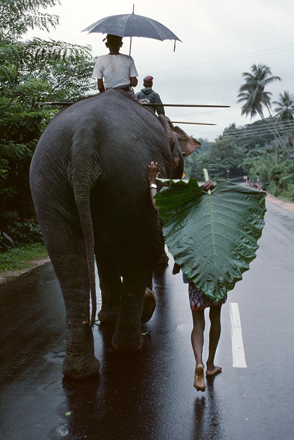 00163_01. Sri Lanka, 1995