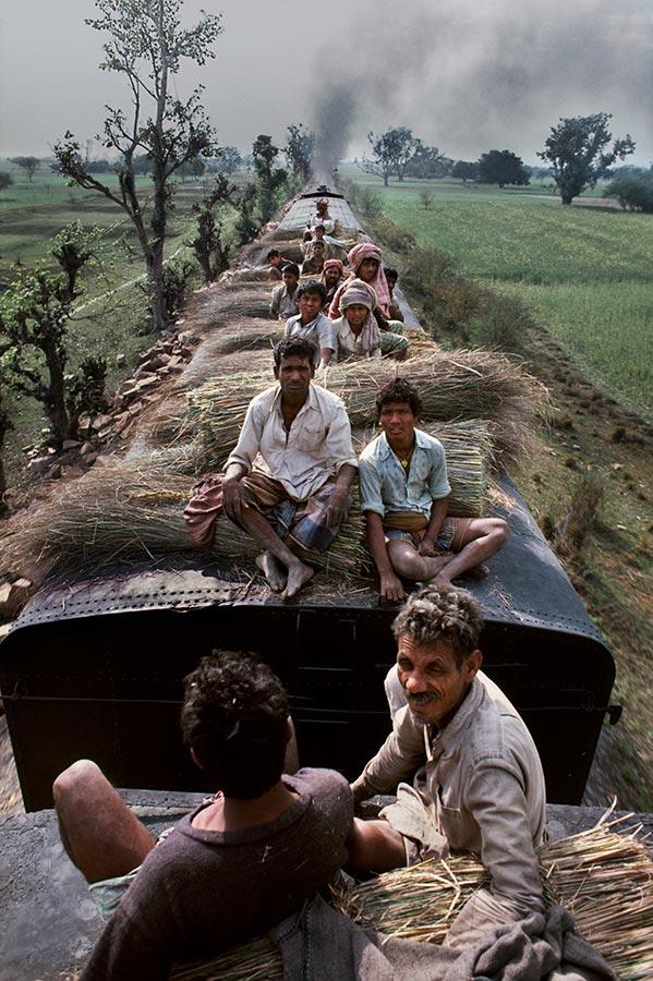 INDIA-11042