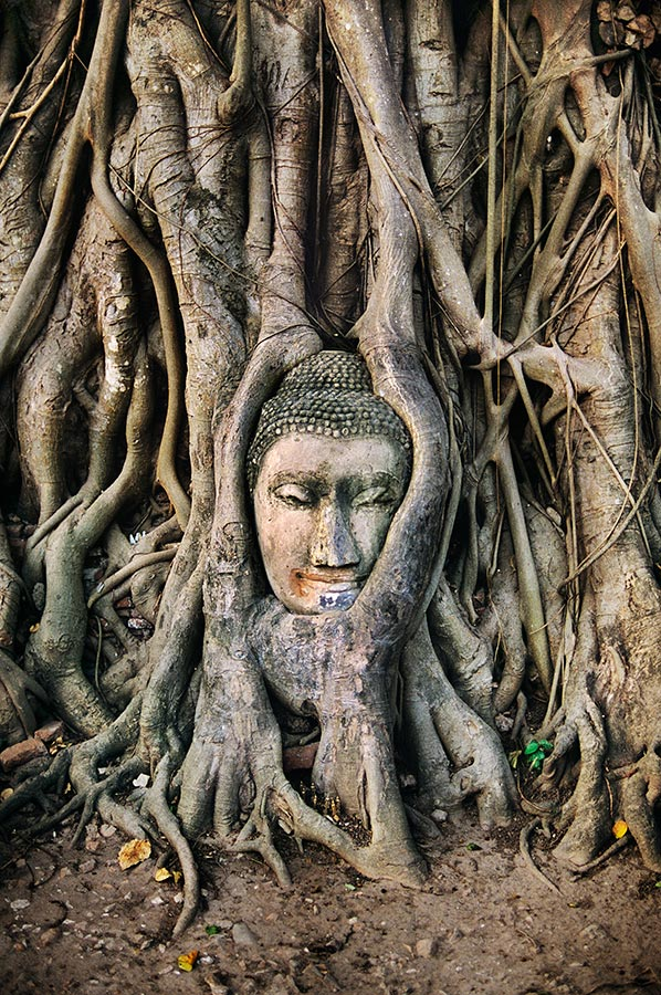 THAILAND-10008NF