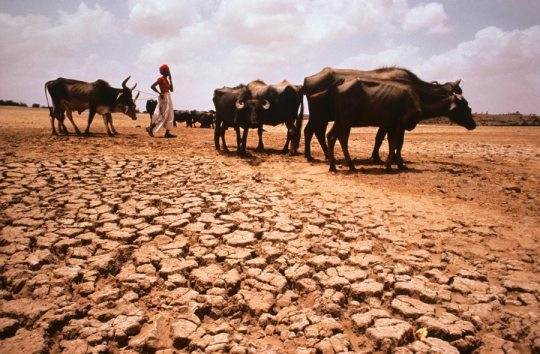 Drought in India. Image source: www.stevemccurry.com