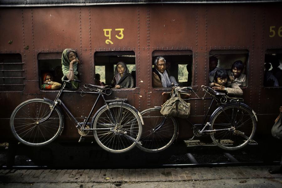 INDIA-11443
