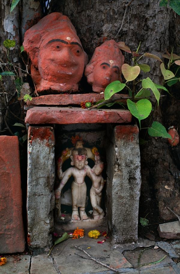 INDIA-10279