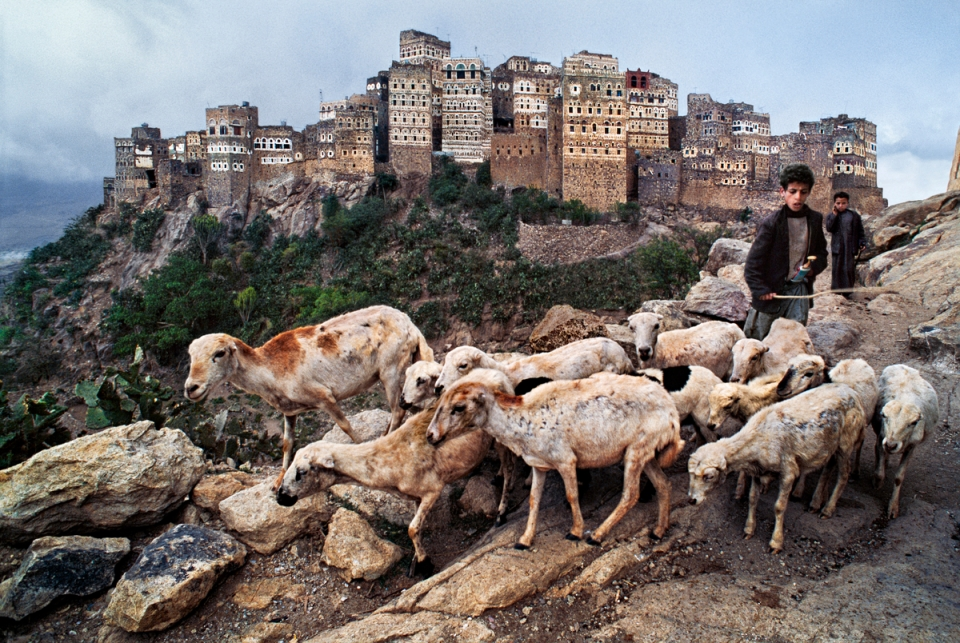 YEMEN-10052NF, Hajjah, Yemen, 1999. A shepherd boy tends to his flock.