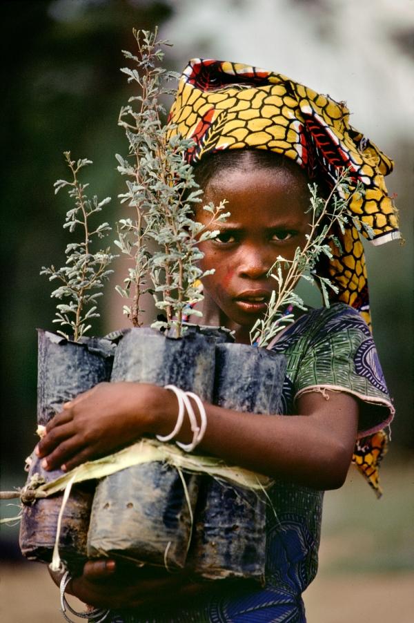 AFRICA-10237