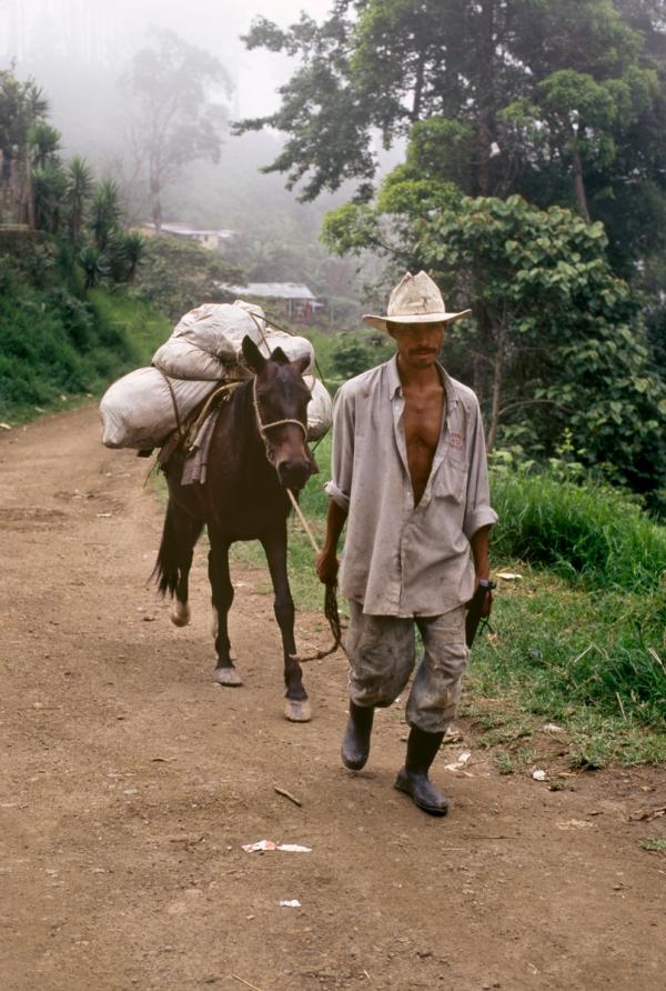 00635_04, Lavazza, Honduras, 2004, HONDURAS-10018NF3