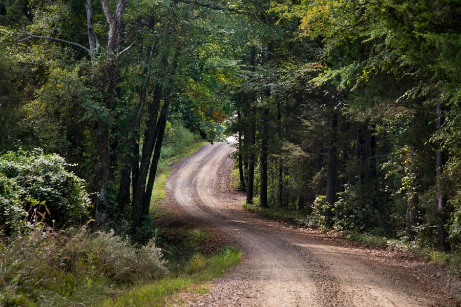 DSC_4675, Deep South, USA, 09/2013, USA-10912. Unpaved country road. Retouched_Sonny Fabbri 7/05/2015