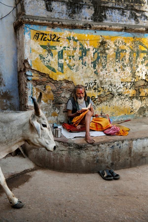 INDIA-12041