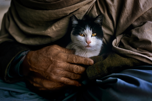00100_11, Mazar-i-Sharif, Afghanistan, 2002, AFGHN-12443. Retouched by Ekaterina Savtsova 02/18/2016