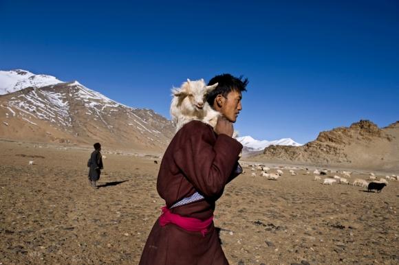 Ladakh, India, 2008